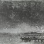 Pinstripe Panorama II Photine