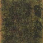 Von Höhnel's Chameleon Photine