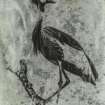 Ishasha Crane Photine